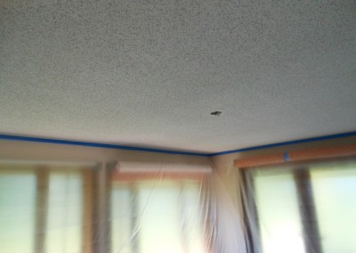 Kelly Pop corn ceiling change to flat ceiling